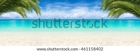 wide paradise beach panorama background with coco palms
