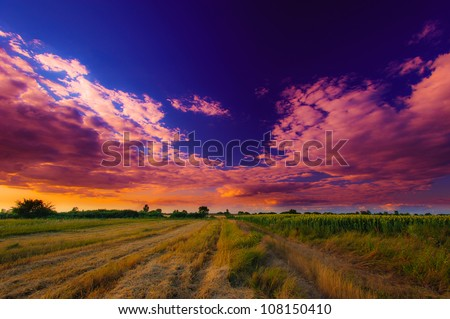 Wide perspective rural scenery and dramatic sunset light