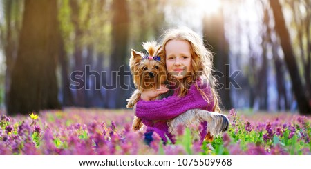 Wide picture with the red haired girl hugging her yorkshire terrier puppy