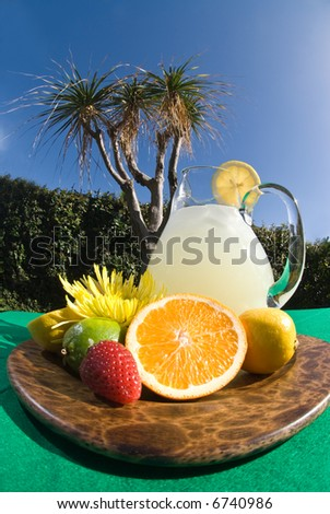 Wide shot of a colorful fruity tray of lemonade