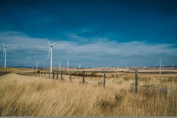 Wide unlimited field of tall dry grass with farm of rotating windmills and blue cloudy sky at background in calm countryside