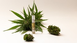Wide view of hemp derived CBD oil infused vape smoking refill cartridges on white background with large hemp flower buds. Generic product image. Popular cigarette smoking substitute. Copy space right.