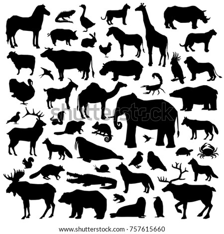 Wild and domestic animals and birds living in various climatic zones big black silhouette set isolated on white background  illustration