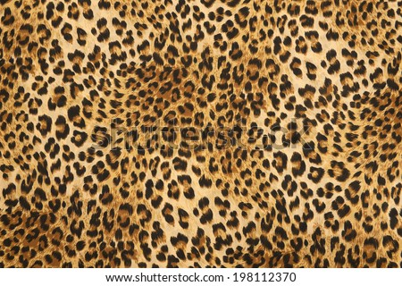 wild animal pattern background or texture - Shutterstock ID 198112370