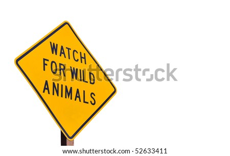 Wild Animal Road Sign