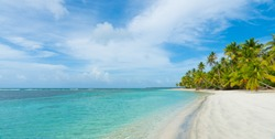 Wild beach with coconut palm trees. Beautiful sea and sky background. Sunset on amazing sea. Clean shore and sea.