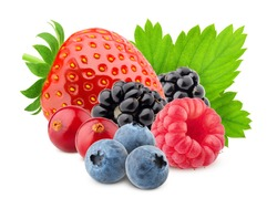 wild berries mix, strawberry, raspberry, blueberry, cranberry, blackberry, isolated on white background, clipping path, full depth of field