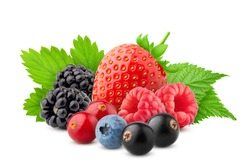 wild berries mix, strawberry, raspberry, currant, blueberry, cranberry, blackberry isolated on white background, clipping path, full depth of field