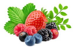 wild berries mix, strawberry, raspberry, currant, blueberry, cranberry, blackberry, isolated on white background, clipping path, full depth of field