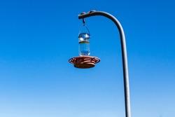 Wild bird hanging bottle/feeder.