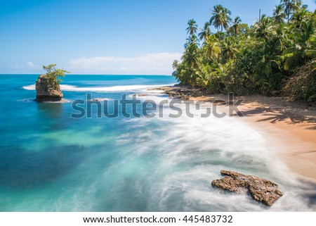 Wild caribbean beach of Manzanillo at Puerto Viejo, Costa Rica #445483732