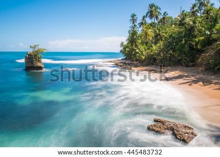 Wild caribbean beach of Manzanillo at Puerto Viejo, Costa Rica #445483732
