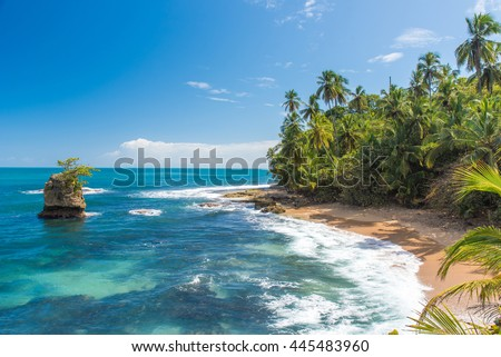 Wild caribbean beach of Manzanillo at Puerto Viejo, Costa Rica #445483960