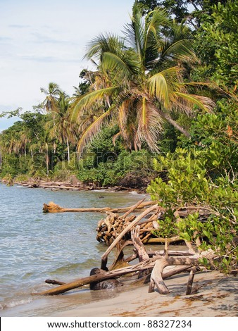Wild coast with lush tropical vegetation in the national park of Cahuita, Caribbean sea, Costa Rica, Central America