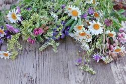 Wild flowers bouquet on wooden