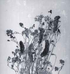 Wild flowers. Daguerreotype style. Film grain. Vintage photography. Botanical negative x-rays scan. Canvas texture background. Vintage, conceptual, old retro aged postcard. Black and white. Monochrome