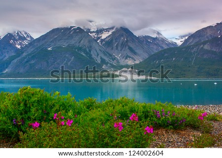 Wild flowers in Glacier Bay National Park, Alaska / color balance is correct, it is natural color of glacier water