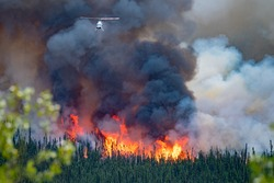 wild forest fire in Canada