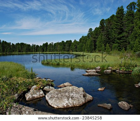 Wild forest, river and Karacol lake, Altai, Russia