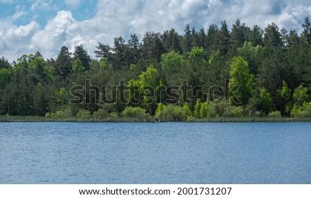 Wild lake in the forest  Zdjęcia stock ©