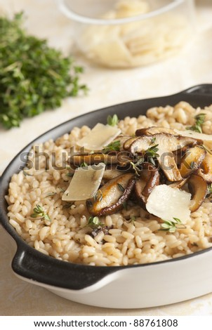 Wild mushroom risotto with herbs and parmesan