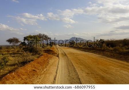 Wild nature of Africa. Kenyan savanna. Flora and fauna