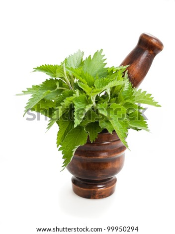 Wild nettle,mortar and pestle isolated on white