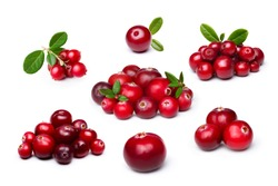 Wild northern berries: lingonberry (foxberry,cowberry),cranberry