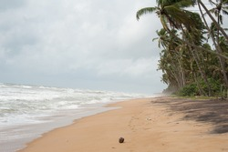 Wild raw empty beach in Sri Lanka