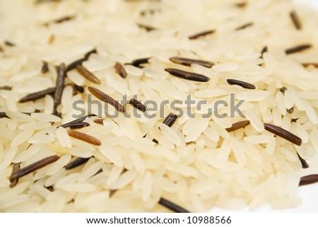 wild rice background