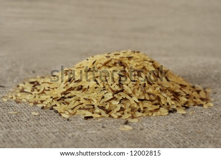 wild rice grains, close-up, on a textile background