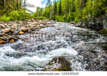 Wild river in deep forest #524430565