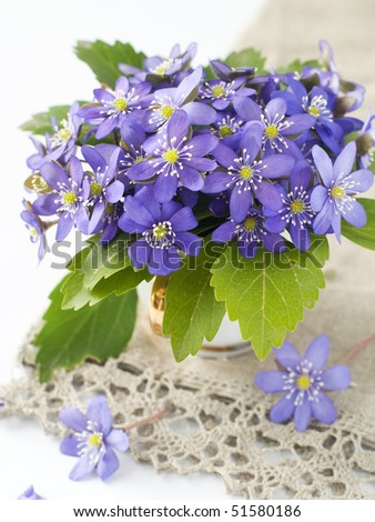 Wild spring flowers in white cup