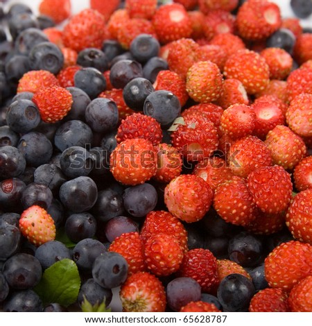 Wild strawberries and blueberries on a white background