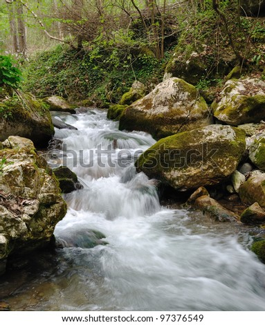 Wild stream between stones in green forest landscape