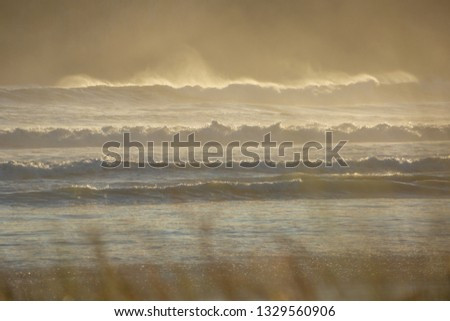 Wild surf with spray and movement, rolls in on the main mount beach at Mount Maunganui, Tauranga, New Zealand. #1329560906