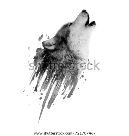 Wild wolf illustration.Animal print.