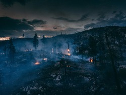 Wildfire burning and flames in overhead drone shot. Aerial view onto forest fire at twilight or dawn. Flames, glow, blaze and smoke over dead woods and trees.