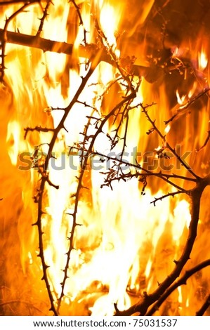 Wildfire burning with large flames