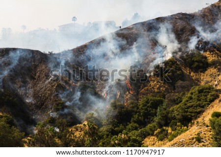 Wildfire on the Mountainside #1170947917