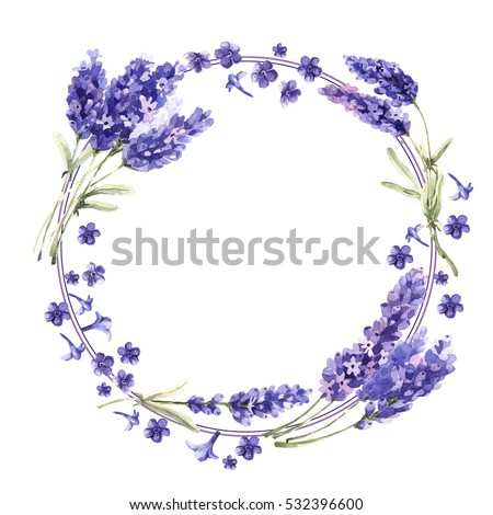 Find free purple flowers names images stock photos and illustration wildflower lavender flower mightylinksfo