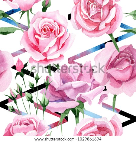 Shutterstock Wildflower pink tea rosa flower pattern in a watercolor style. Full name of the plant: rosa, rose, hulthemia. Aquarelle wild flower for background, texture, wrapper pattern, frame or border.