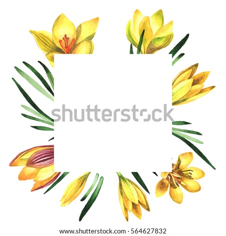 Find free yellow flowers names images stock photos and illustration wildflower rose crocuses frame the yellow gerbera flower mightylinksfo