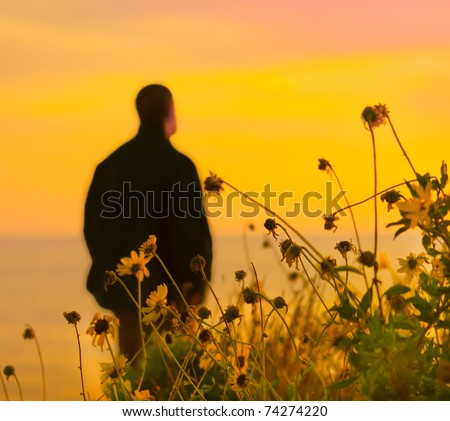 Wildflowers by the shore, against the sunset and a lone man in the distance