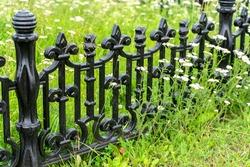 wildflowers grow around the black grave fence