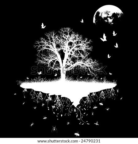 wildlife in the night