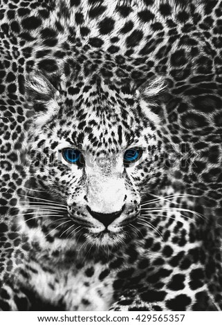 wildlife print. sublimation print design, Design For textile printing, animal print,  leopard skin. wildlife.