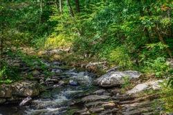 willard brook  located in willard  brook state forest in townsend forest