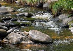willard brook  traveling through willard brook state  forest in townsend massachusetts