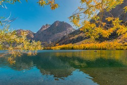 Willow  and Aspen trees are golden in Autumn and surround Silver Lake at June Lake Loop in the Californian Sierra Nevada mountains of California.